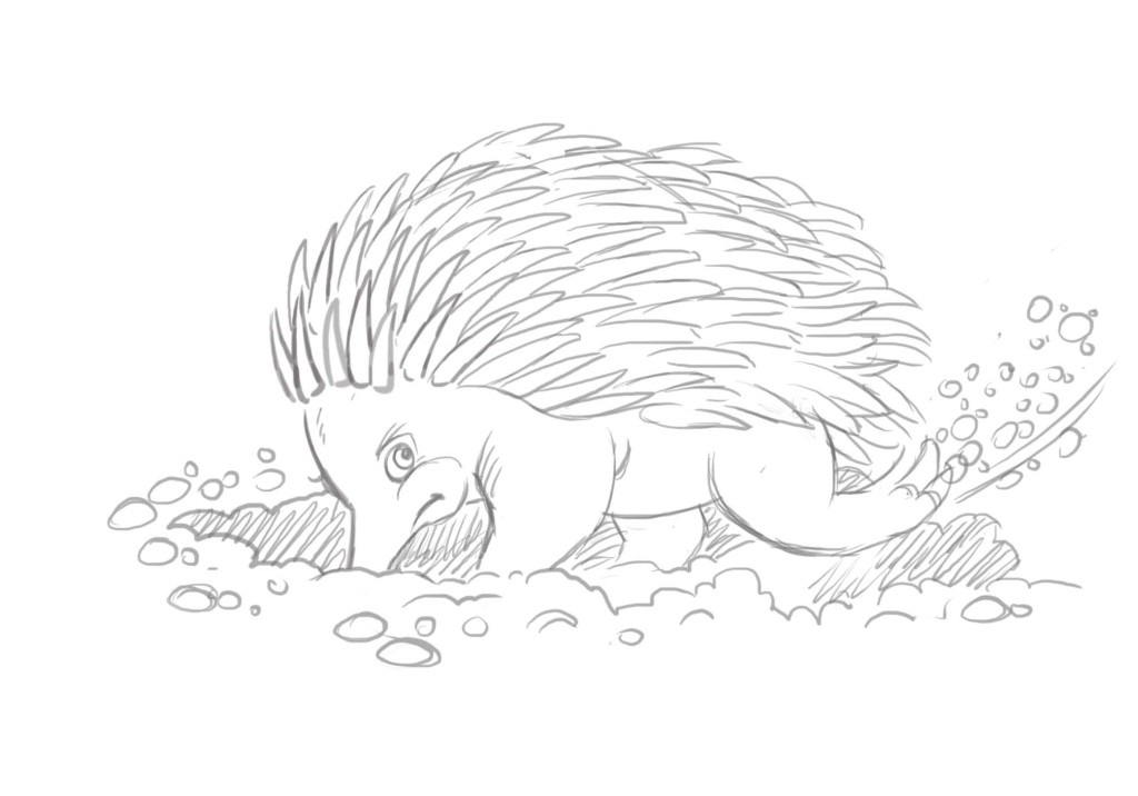 Spike Echidna digging sketch - Magical Mountains