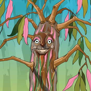 Magical Mountains Breanna The Gum Tree