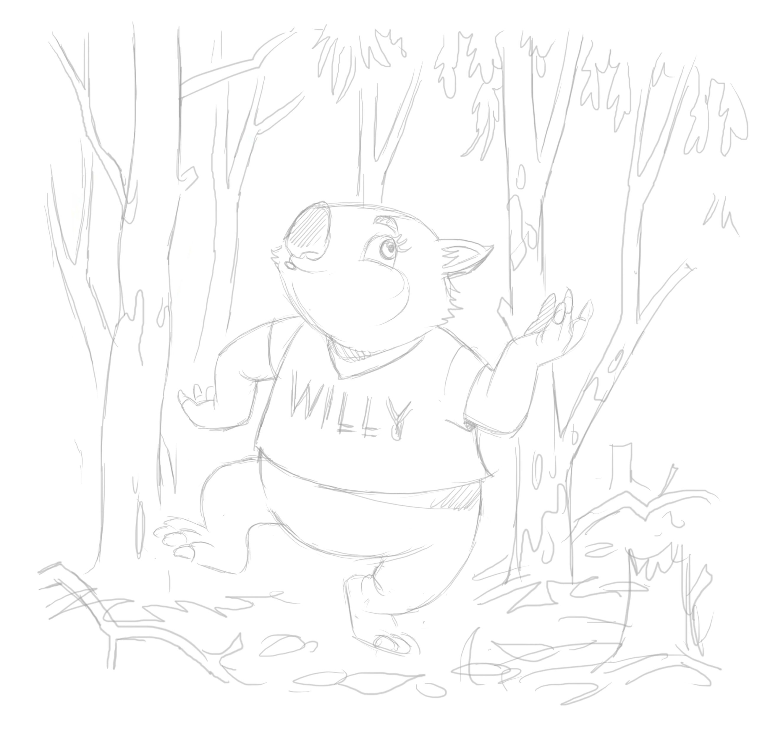 Willy Wombat sketch - Magical Mountains